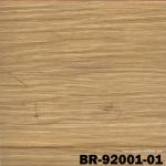 BR 92001-01
