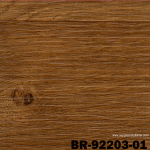 BR 92203-01