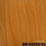 BR92002-01