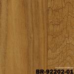 BR92202-01