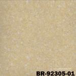 BR92305-01