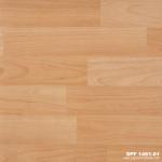 SPF 1451-01