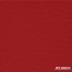 SPF 6200-01